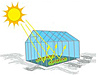 Sun's rays beaming into a greenhouse