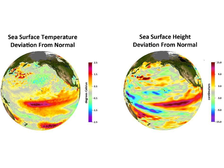 Deviations from normal sea surface temperatures (left) and sea surface heights (right) at the peak of the 2009-2010 central Pacific El Nino