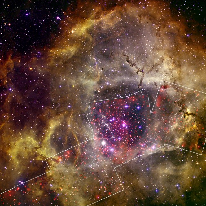 Rosette Nebula (from Chandra Xray Observatory):  The Heart of the Rose