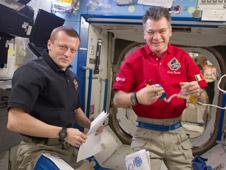 ISS026-E-034321: Dmitry Kondratyev and Paolo Nespoli