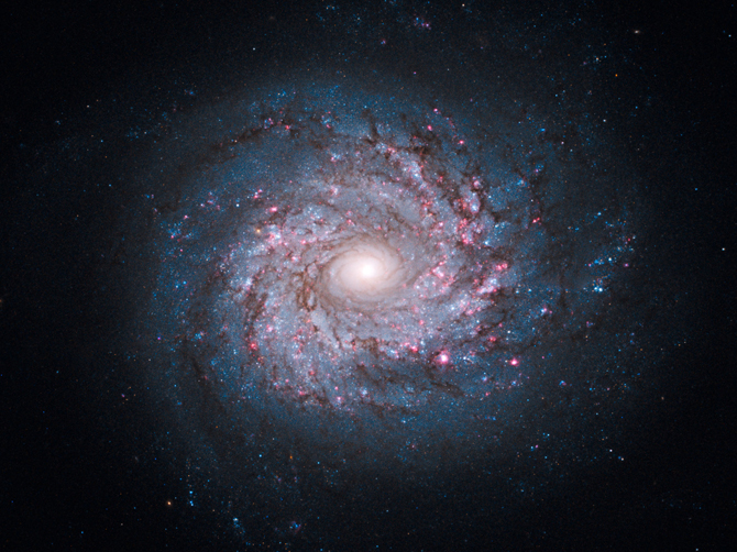 Hubble image of NGC 3982