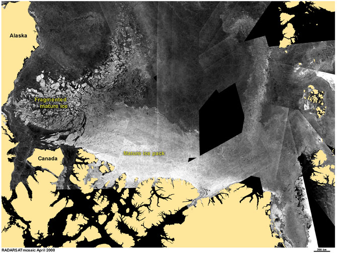 A mosaic of satellite images show the movement of fragmented ice away from ice edge, which scientists use to track the loss of multiyear ice due to melt.