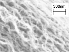 Multiwalled carbon nanotubes are tiny hollow tubes made of pure carbon about 10,000 times thinner than a strand of human hair.