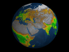 Still from animation showing seasonal vegetation changes on Earth in 2004.
