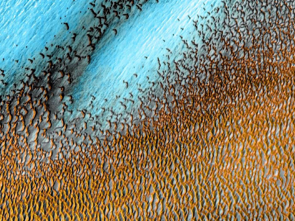 A sea of dark dunes on Mars