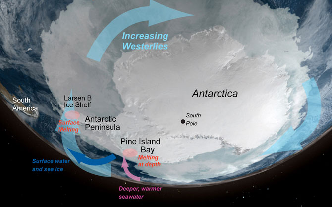 West Antarctica is seeing dramatic ice loss particularly the Antarctic Peninsula and Pine Island regions. Ice loss culprits include the loss off buttressing ice shelves, wind, and a sub-shelf channel that allows warm water to intrude below the ice.