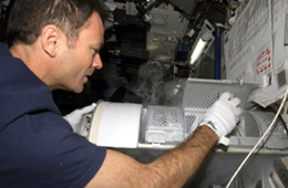 An astronaut prepares to insert a sample container into the Minus Eighty Degree Laboratory Freezer.