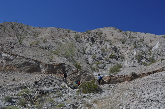 Surface rupture on the Borrego Fault