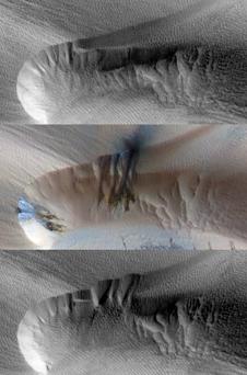 Seasonal Changes in Northern Mars Dune Field