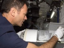 Storing samples in MELFI freezer aboard the International Space Station