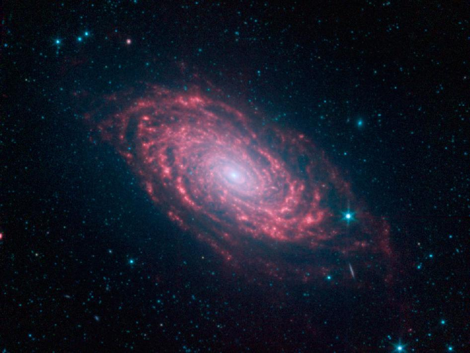 This view of the Sunflower galaxy highlights a variety of infrared wavelengths captured by Spitzer.