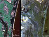 Satellite images of the Japanese coastline before and after the March 2011 earthquake