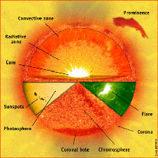 The image gives a basic overview of the Sun's parts. The cut-out shows the three major interior zones: the core (where energy is generated by nuclear reactions), the radiative zone (where energy travels outward by radiation through about 70% of the Sun), and the convection zone (where convection currents circulate the Sun's energy to the surface). The surface features (flare, sunspots and photosphere, chromosphere, and the prominence) are all clipped from actual SOHO images of the Sun.