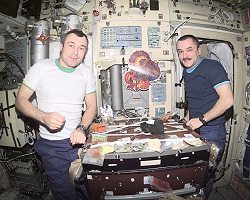 Cosmonauts Vladimir N. Dezhurov (left) and Mikhail Tyurin, both Expedition 3 flight engineers representing Rosaviakosmos, eat a Thanksgiving meal in the Zvezda Service Module on the International Space Station.