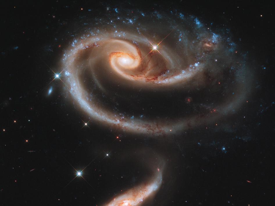 nasa rose of galaxies