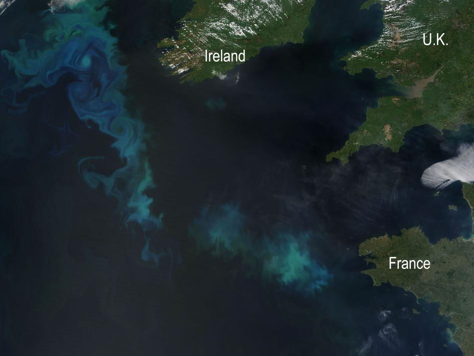 Late May 2010 brought peacock-hued swirls of blue and green to the North Atlantic. The iridescent waters formed a giant arc hundreds of kilometers across, extending from west of Ireland to the Bay of Biscay. The Moderate Resolution Imaging Spectroradiometer (MODIS) on NASA's Terra satellite captured this natural-color image on May 22, 2010. The vibrant colors are from tiny organisms, phytoplankton, that grow explosively in the North Atlantic—from Iceland to the shores of France—in the spring and summer.