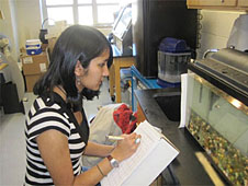 A student writes while looking at an aquarium