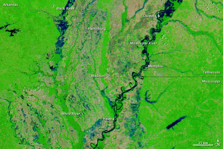 satellite image of portion of Mississippi River