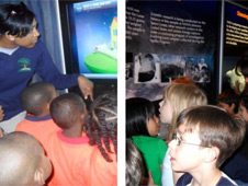 Children looking at displays from the Driven to Explore exhibit