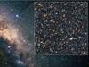 Blue straggler stars in the Milky Way