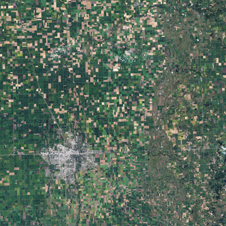 satellite image of farmland in Minn.