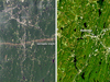 Combined images of area affected by tornado, after on left, before on right.
