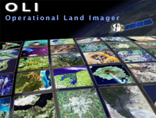 Operational Land Imager (OLI) logo small