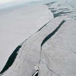An ice island about 1.5 kilometers long, 250 meters wide, and 30 meters thick