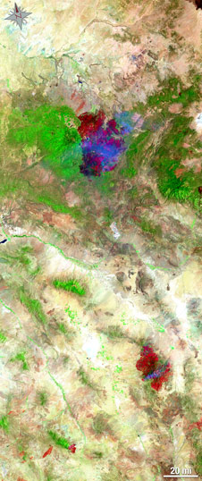 Landsat image of both the Wallow and Horseshoe fires