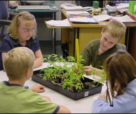 During a previous Tomatosphere program, students studied the growth of their tomato plants