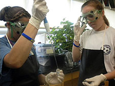 Two students performing experiment
