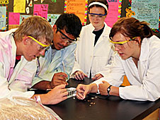 Four students prepare wheat for an experiment