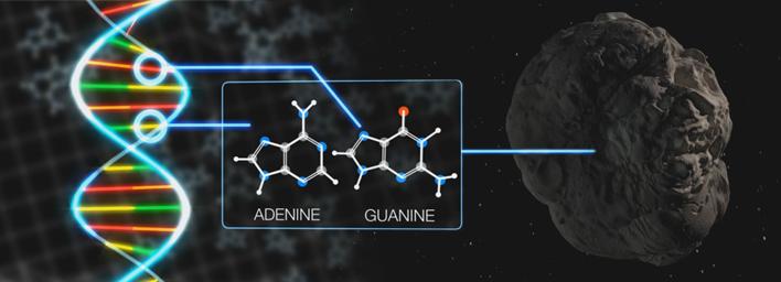 Meteorite DNA