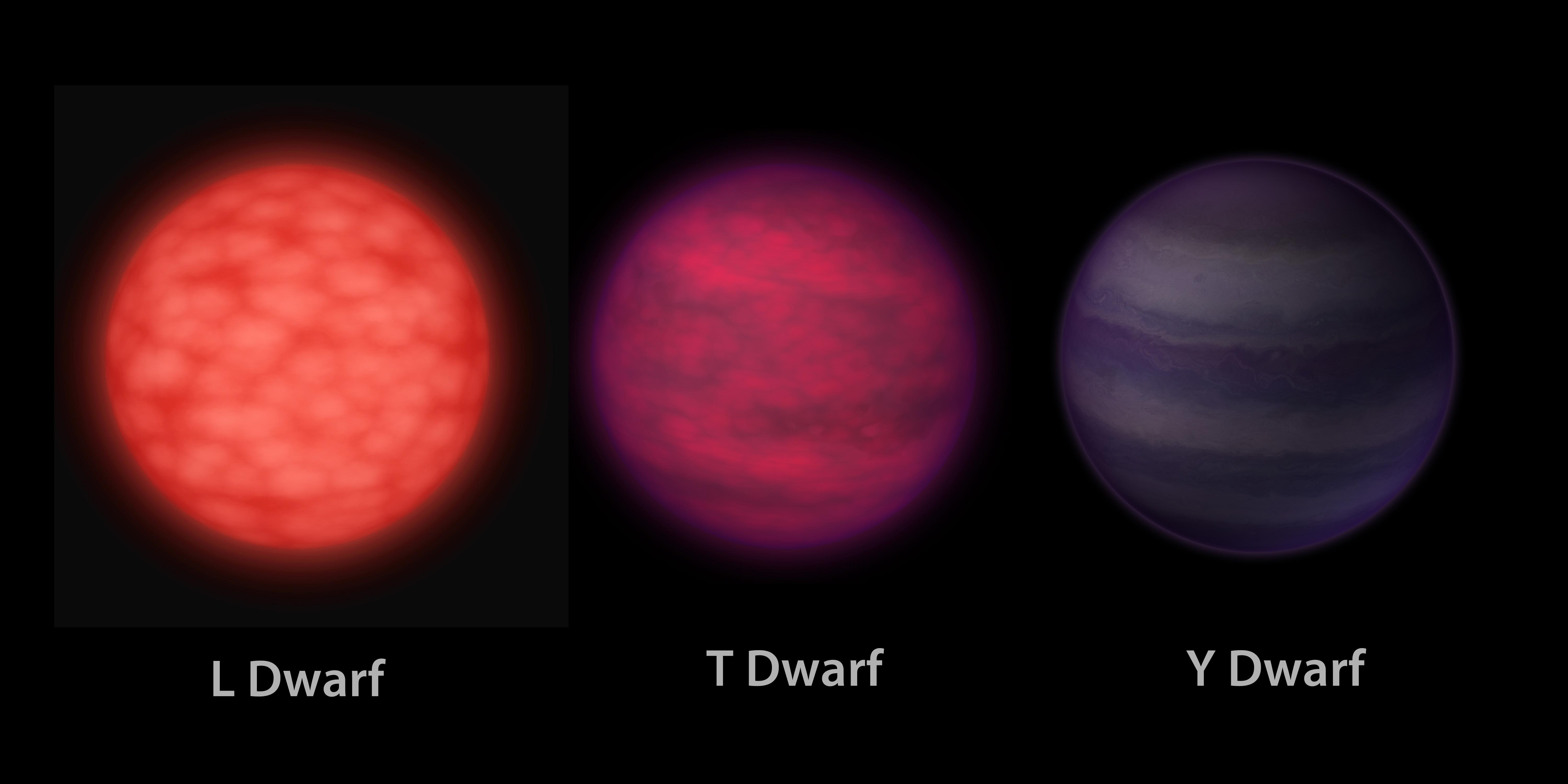 Red and Brown Dwarf Stars  Stars  Astronomy for Kids
