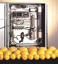Picture of oranges that were kept fresh using NASA technology