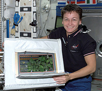 Astronaut Peggy Whitson showing a plant experiment in space