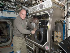 Astronaut Scott Kelley installing the Capillary Channel Flow, or CCF, in the Microgravity Science Glovebox, or MSG, on board the International Space Station.