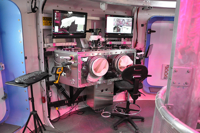The science glovebox inside the Deep Space Habitat.