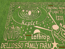 Corn maze at Dell'Osso Farms in Lathrop, California. Image credit The MAiZE Inc.