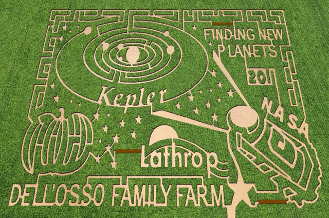 Corn maze at Dell'Osso Farms in Lathrop, California. Image courtesy of The MAiZE Inc.