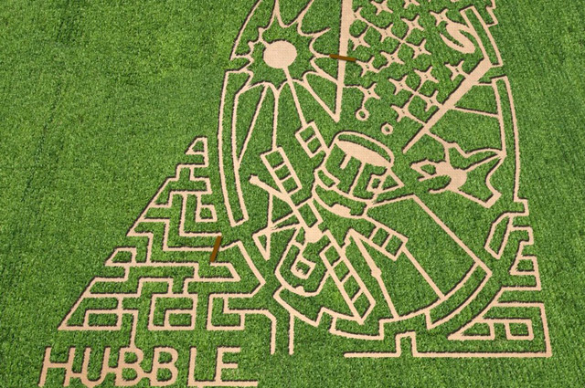 Corn maze at Liberty Ridge Farm in Schaghticoke, New York. Image courtesy of The MAiZE Inc
