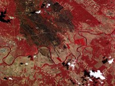 The International Space Station Agricultural Camera took images of a wildfire in Bastrop County, Texas on Sept. 24