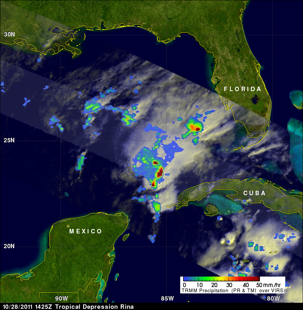 this radar image of rina s rainfall was captured by the trmm satellite