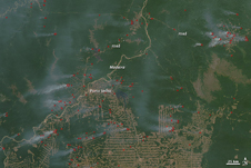 satellite image of active fires along the Madeira River in Brazil