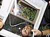 La astronauta Peggy Whitson con el experimento Advanced Astroculture de la planta de soja