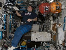 Astronaut Greg Chamitoff, Expedition 17 flight engineer, uses a computer while working with the Synchronized Position Hold, Engage, Reorient, Experimental Satellites (SPHERES)