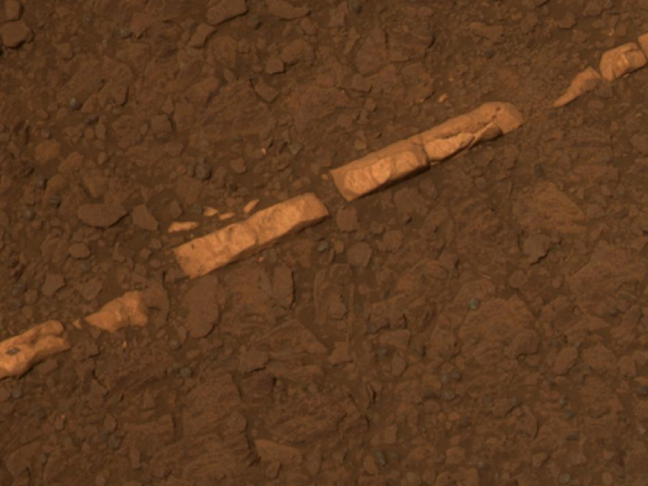 color view of a mineral vein called 'Homestake'