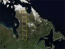 Yellow outlines mark the location of the nine Landsat scenes used in this study.