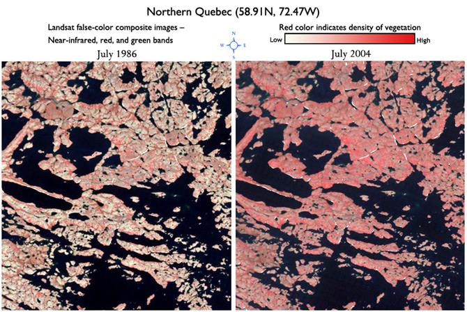 Comparison of area in Northern Quebec showing increased vegetation between 1986 and 2004.