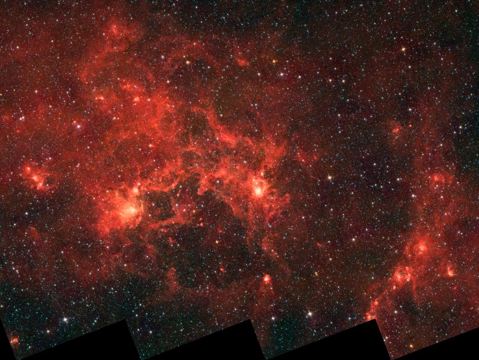 Infrared image from NASA's Spitzer Space Telescope shows the nebula nicknamed 'the Dragonfish'